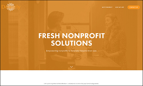 The nonprofit consultants at Donorly are experts at helping small orgs build capacity through prospecting.