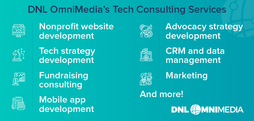 This is a brief overview of Team DNL's nonprofit technology consulting services.