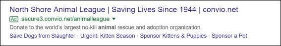 This example Google AdWords ad for a nonprofit directs to a donation page.